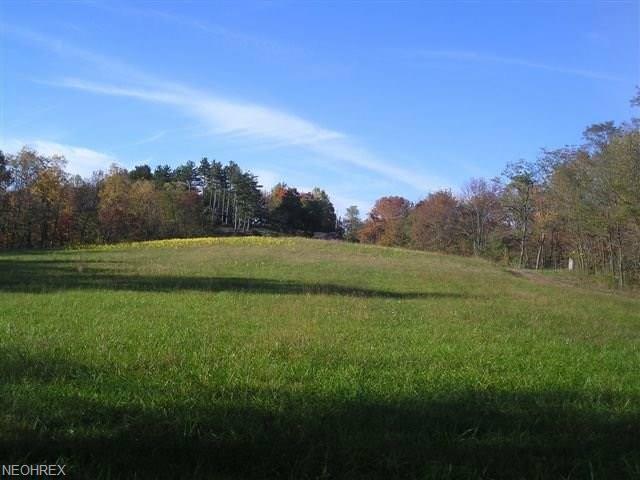 37373 Kinney Ridge Rd, Woodsfield, OH 43793 (MLS #3990904) :: Keller Williams Chervenic Realty