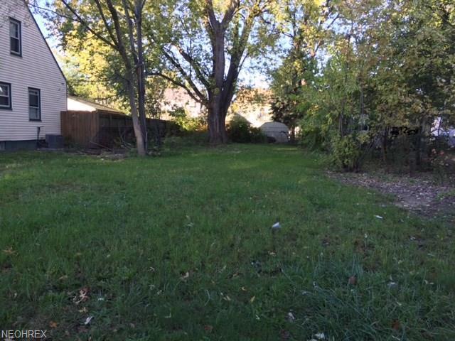 1196 Tulip St, Akron, OH 44301 (MLS #3996491) :: The Crockett Team, Howard Hanna