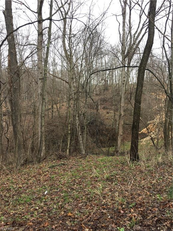 Clay Pike Rd, Byesville, OH 43723 (MLS #3999568) :: Keller Williams Chervenic Realty