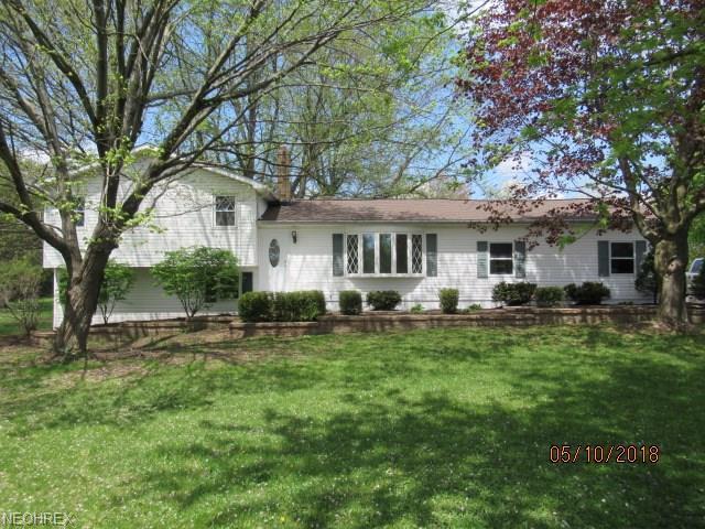 11025 Haverhill Cir NE, Hartville, OH 44632 (MLS #4000395) :: RE/MAX Trends Realty