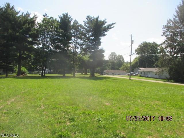 Haynes Ave, Norton, OH 44203 (MLS #4002373) :: The Crockett Team, Howard Hanna