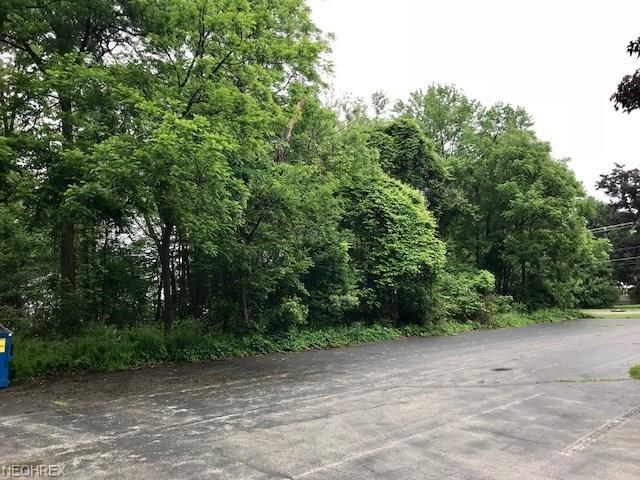 Mathews Rd, Youngstown, OH 44514 (MLS #4005025) :: RE/MAX Trends Realty
