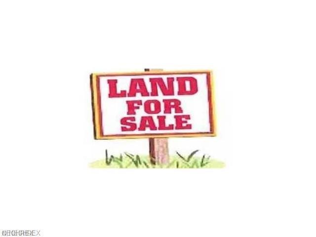 0 Zachery Lane, Chester, WV 26034 (MLS #4009616) :: Tammy Grogan and Associates at Cutler Real Estate