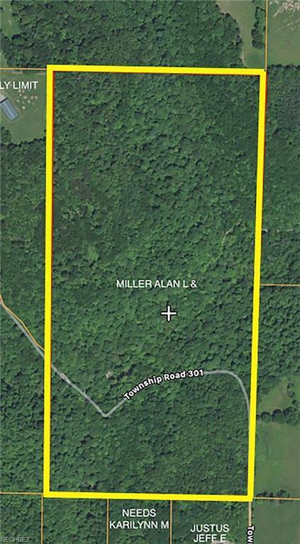 Township Road 301, Hammondsville, OH 43930 (MLS #4012008) :: The Crockett Team, Howard Hanna