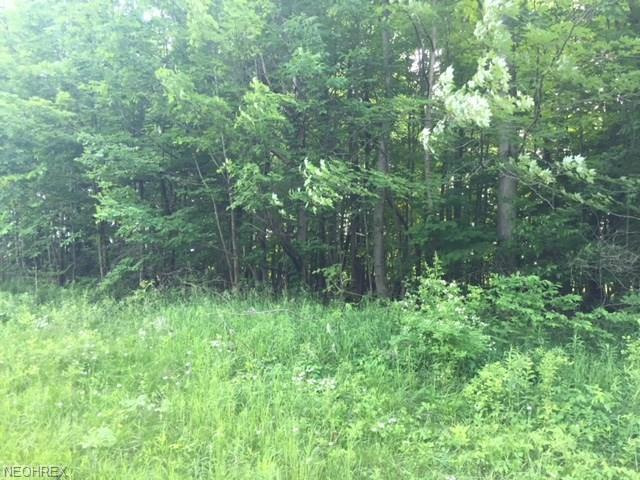 Dora Dr, Newbury, OH 44065 (MLS #4012162) :: Keller Williams Chervenic Realty