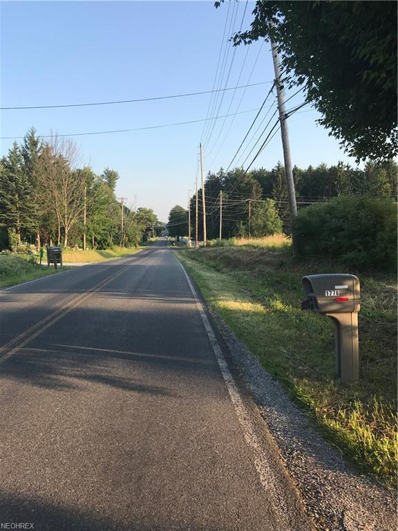 Stony Hill Rd, Hinckley, OH 44233 (MLS #4018161) :: The Crockett Team, Howard Hanna