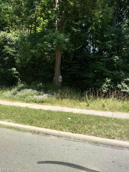2 Moccasin Trail, Girard, OH 44420 (MLS #4020002) :: Keller Williams Chervenic Realty