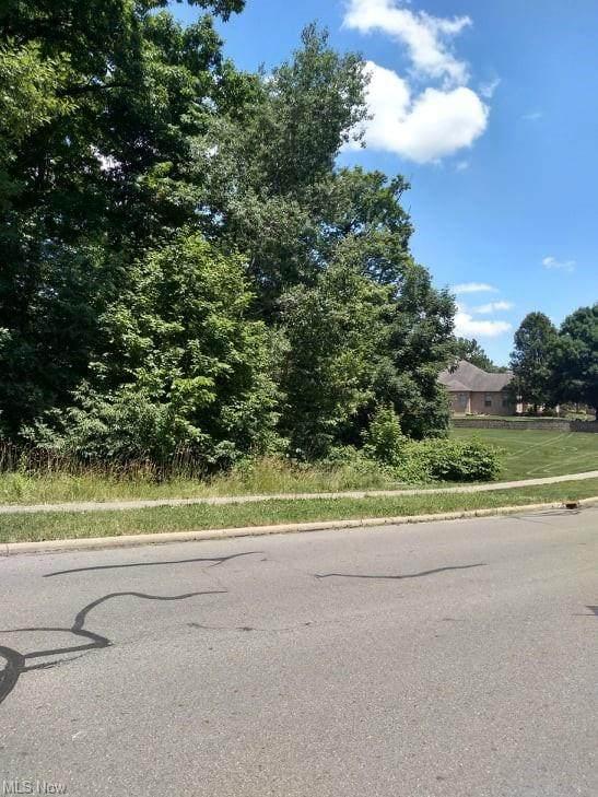 1 Moccasin Trail, Girard, OH 44420 (MLS #4020006) :: Keller Williams Chervenic Realty