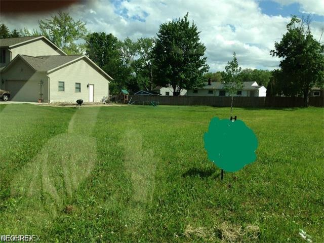 1005 Chrysann Avenue, Girard, OH 44420 (MLS #4022610) :: RE/MAX Valley Real Estate