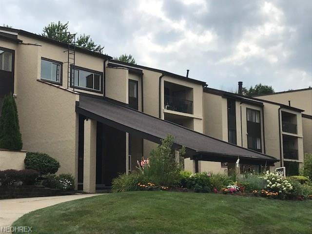 1006 Bunker Dr #306, Fairlawn, OH 44333 (MLS #4026555) :: RE/MAX Trends Realty