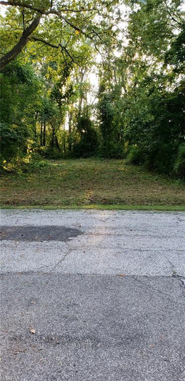 995 Robinhood Ave, Painesville, OH 44077 (MLS #4028647) :: The Crockett Team, Howard Hanna