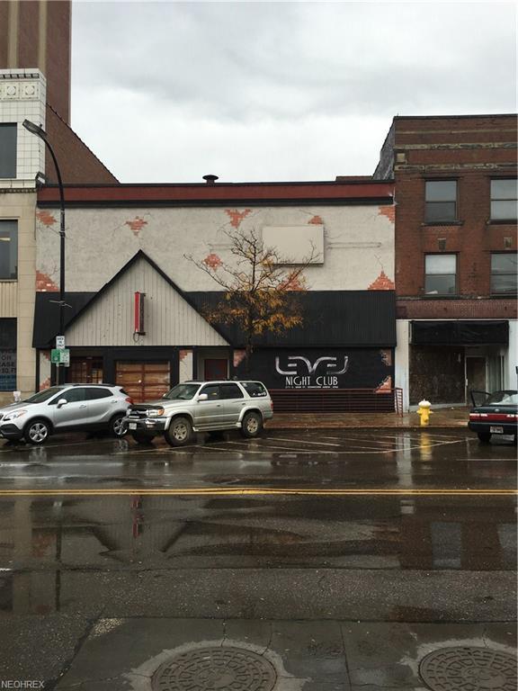 271 S Main St, Akron, OH 44308 (MLS #4029577) :: PERNUS & DRENIK Team