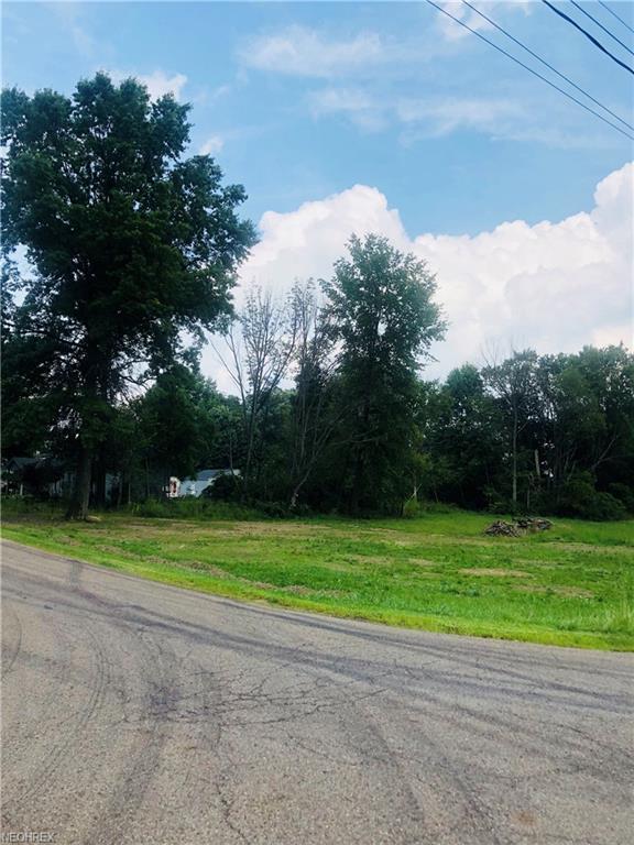 Fair St, Canfield, OH 44406 (MLS #4032190) :: Keller Williams Chervenic Realty