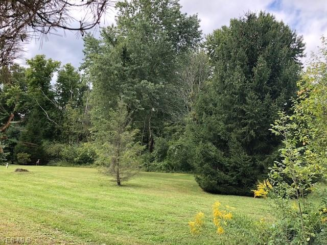 Lake & Buffham Rd, Seville, OH 44273 (MLS #4036808) :: RE/MAX Edge Realty
