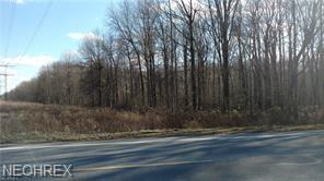 Chestnut Ridge Rd, North Ridgeville, OH 44039 (MLS #4048256) :: RE/MAX Valley Real Estate