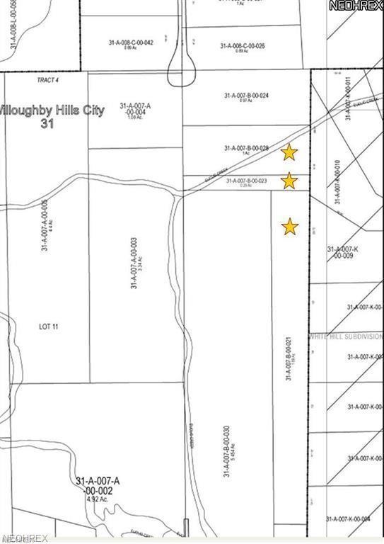 Emerald Lake Blvd, Willoughby Hills, OH 44094 (MLS #4048510) :: The Crockett Team, Howard Hanna
