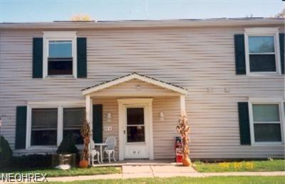 121 Ivy Hill Ln A-7, Medina, OH 44256 (MLS #4052224) :: RE/MAX Trends Realty