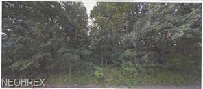 Marlborough Ave, Parma, OH 44129 (MLS #4052446) :: RE/MAX Valley Real Estate