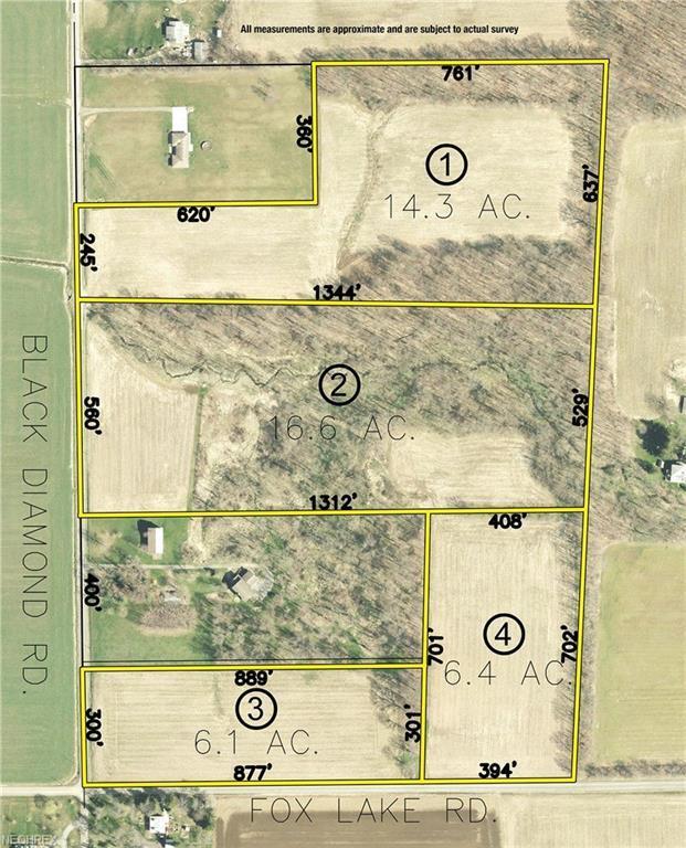 Black Diamond Rd, North Lawrence, OH 44666 (MLS #4053170) :: Keller Williams Chervenic Realty