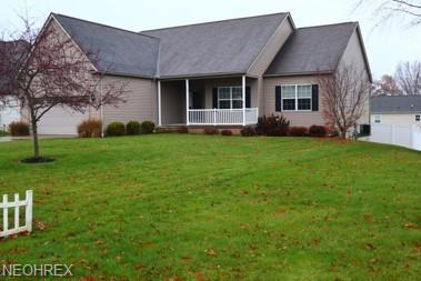 594 Catawba Dr, Wadsworth, OH 44281 (MLS #4055156) :: The Crockett Team, Howard Hanna