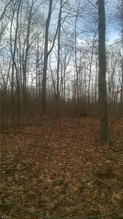 1548 King Rd, Hinckley, OH 44233 (MLS #4061131) :: RE/MAX Edge Realty