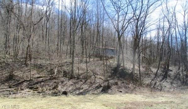 41770 Route 1 - Factory Hollow Rd, Lower Salem, OH 45745 (MLS #4063877) :: RE/MAX Trends Realty