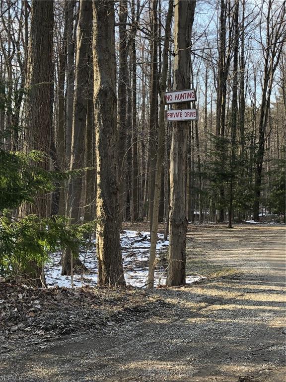 Sherman Road, Chardon, OH 44024 (MLS #4082494) :: Keller Williams Chervenic Realty