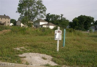 Lot 85 Squirrel Hollow Street NE, Canton, OH 44704 (MLS #4085383) :: RE/MAX Valley Real Estate