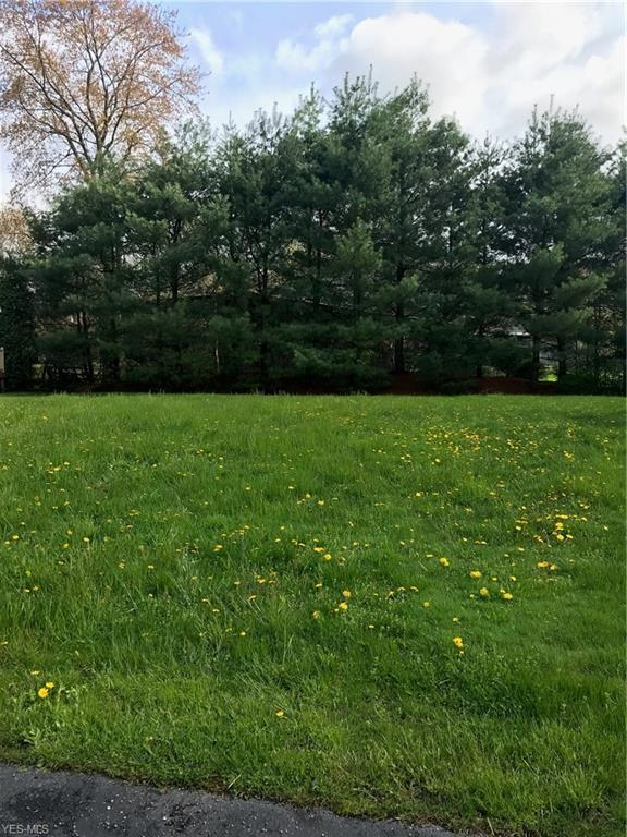 V/L Timber Lake, Hubbard, OH 44425 (MLS #4092325) :: RE/MAX Trends Realty