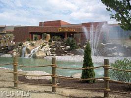 7000 Kalahari #5509, Sandusky, OH 44870 (MLS #4093998) :: RE/MAX Valley Real Estate