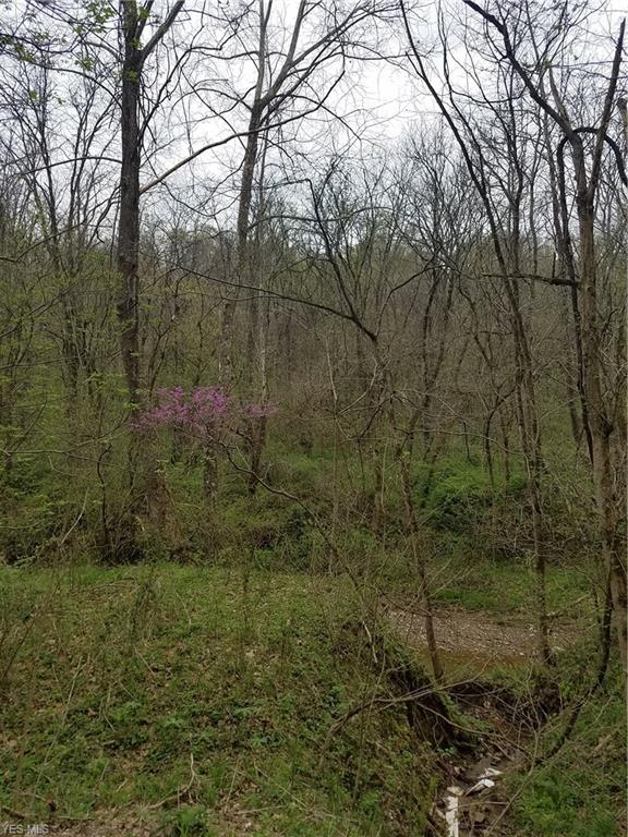 Mill Run Rd, Stockport, OH 43787 (MLS #4096252) :: RE/MAX Trends Realty
