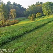 Township Road 1162, Conesville, OH 43811 (MLS #4096888) :: RE/MAX Valley Real Estate