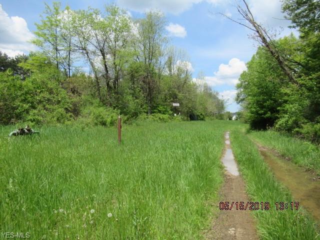 Ridgewood Rd, Copley, OH 44303 (MLS #4099825) :: RE/MAX Edge Realty