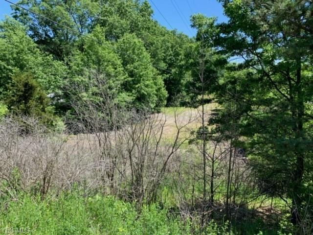 West River Road, Vermilion, OH 44089 (MLS #4101882) :: The Crockett Team, Howard Hanna