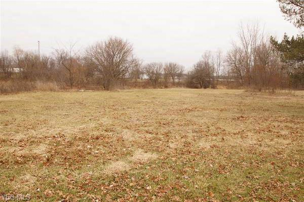 Parcel 3 Myers Street, Creston, OH 44217 (MLS #4108815) :: The Art of Real Estate