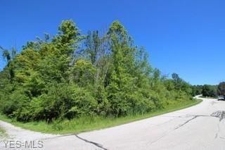 19110 Ridgeview Trail, Chagrin Falls, OH 44023 (MLS #4109559) :: The Crockett Team, Howard Hanna