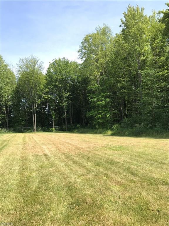 Nicklaus Drive Circle, Warren, OH 44484 (MLS #4110432) :: RE/MAX Valley Real Estate