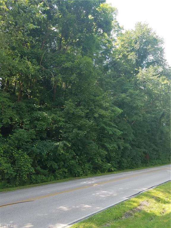 1824 West Drive, Hinckley, OH 44233 (MLS #4111309) :: The Crockett Team, Howard Hanna