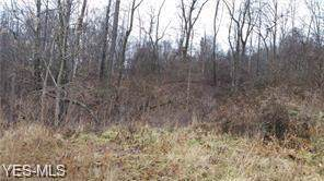 61 Acres Germantown Rd, Lower Salem, OH 45745 (MLS #4125786) :: RE/MAX Edge Realty