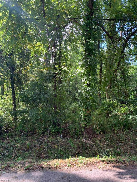 E Tuscarawas Extension, Barberton, OH 44203 (MLS #4131184) :: RE/MAX Valley Real Estate