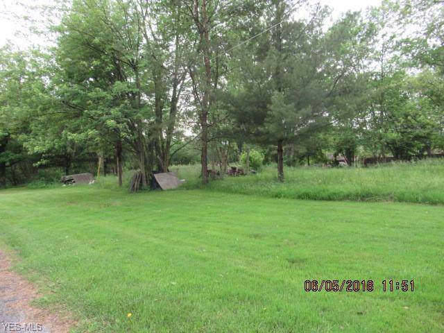 Richland Avenue, Norton, OH 44203 (MLS #4136064) :: RE/MAX Valley Real Estate