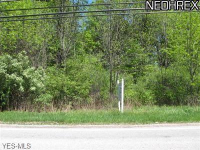 Schady Road, Olmsted Township, OH 44138 (MLS #4137134) :: The Crockett Team, Howard Hanna