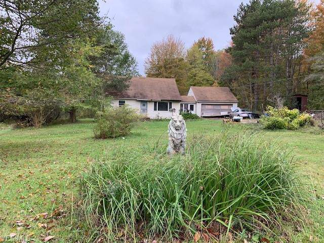 10814 Sperry Road, Kirtland, OH 44094 (MLS #4143287) :: RE/MAX Trends Realty