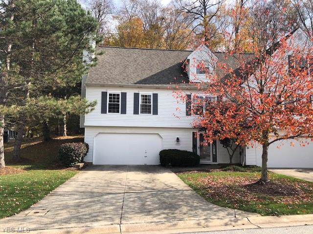 10478 White Ash Trail, Twinsburg, OH 44087 (MLS #4147324) :: RE/MAX Pathway