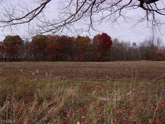 State Route 7, Williamsfield, OH 44082 (MLS #4148556) :: The Crockett Team, Howard Hanna