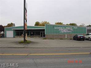 10666 Main Street, New Middletown, OH 44442 (MLS #4151783) :: The Art of Real Estate