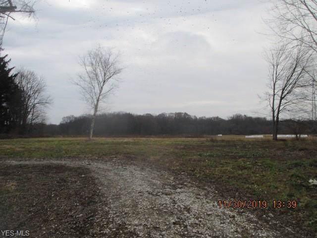 4060 Stimson Road, Norton, OH 44203 (MLS #4153038) :: RE/MAX Valley Real Estate
