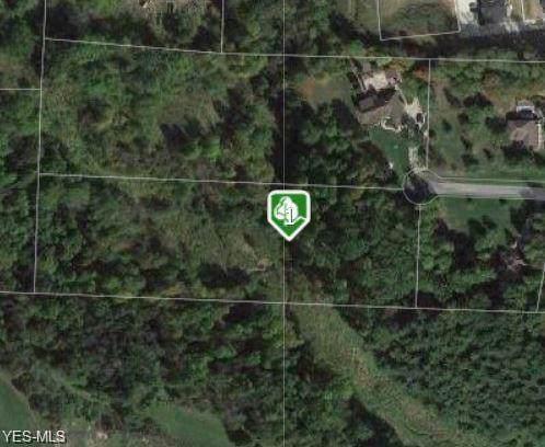 Ashwood Drive, Belmont, OH 43718 (MLS #4155420) :: The Crockett Team, Howard Hanna