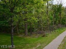 Lake Street, Madison, OH 44057 (MLS #4163697) :: The Crockett Team, Howard Hanna