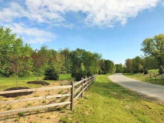 8642 Hunters Ridge Run, Wadsworth, OH 44281 (MLS #4165056) :: RE/MAX Edge Realty